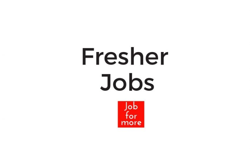 IT Fresher Jobs